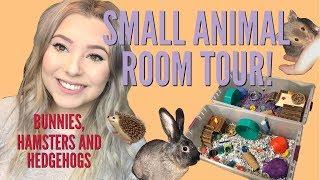 PET ROOM TOUR!   HEDGEHOGS, BUNNIES, HAMSTERS