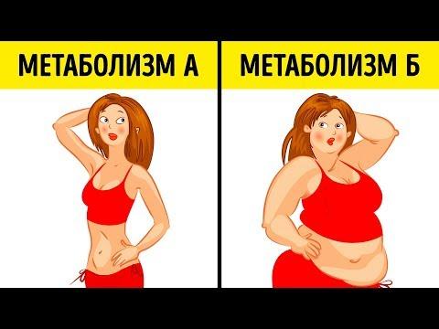 Что Такое Метаболическая