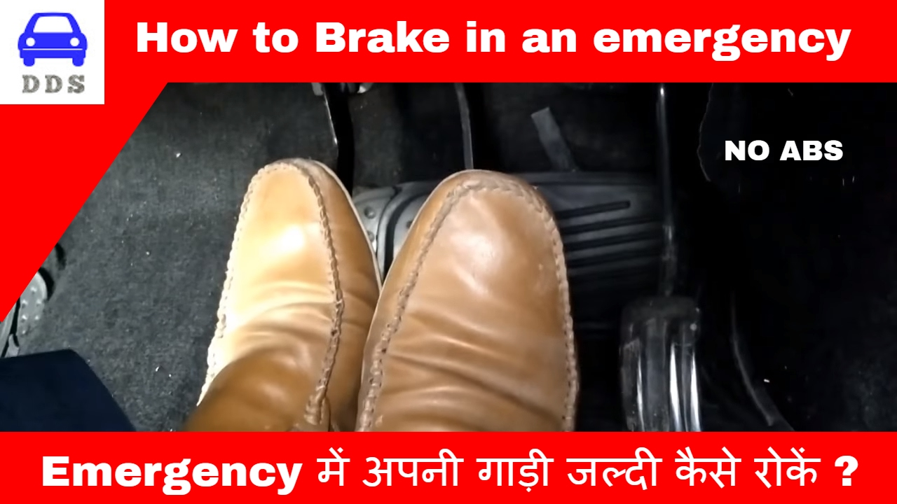 How to Perform an Emergency Stop on a Horse
