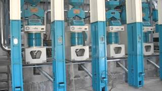 5 ton Rice Mill