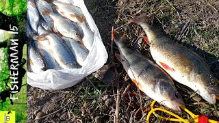 Зимняя рыбалка 2020 Рыба радует Днестр Маяки