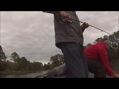 Bastroppin 39 lake bastrop austin bass fishing guide for Austin bass fishing