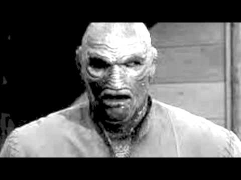 The Creature Walks Among Us (1956) Movie Review