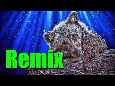 Не лезь дебил! Remix / Нападение животных, злые животные / Vолжанин