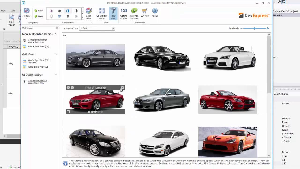 DevExpress WinForms Grid: WinExplorer View - Basics by DevExpress
