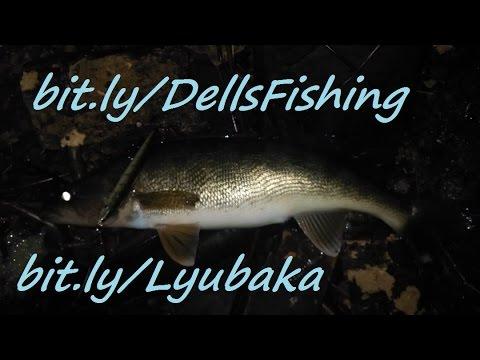 Walleye fishing report wisconsin river dells dam dec 23 for Wisconsin dells fishing report