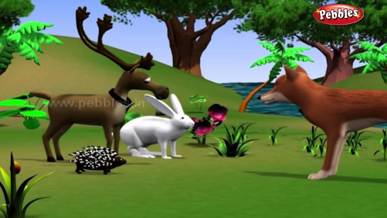 Rabbit And Hedgehog  E A B E A Bf E A  E A A E A   E A  E A B E A Be E A A E A  D Moral Stories For Kids In Hindi Animal Stories In Hindi