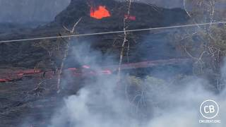 Live Video: Kilauea Lava Flow Activity In Lower Puna