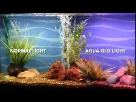 Aqua Glo Fish Color Enhancing Aquarium Bulb By Hagen
