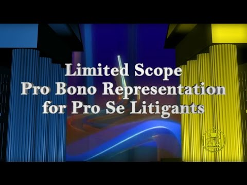 Court to Court: Limited Scope Pro Bono Representation for Pro Se Litigants
