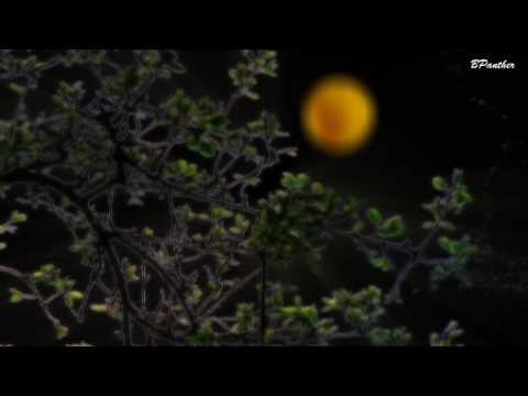 Gustav Holst Die Planeten Op. 32 The Planets Jupiter / Klassische Musik - Classical Music