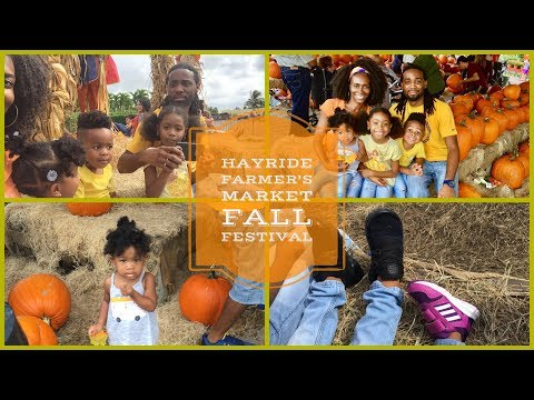 Pumpkin Patch | Hayride | Fall Harvest Festival | Kiddie Corn Maze | Flamingo Road Nursery