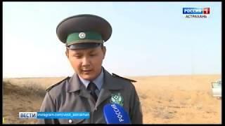 В Астраханской области идет деградация земель