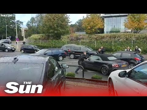 Dramatic Moment UK Armed Cops Swoop In On Audi In North London