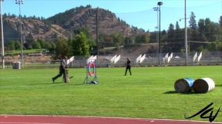 2014 Canadian Police K9 Championship -  Arzan And Jester -  Youtube