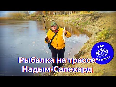 Еду на Ямал — Путешествие в автодоме. Рыбалка на трассе Надым-Салехард (Серия 10)