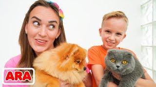 تبادل فلاد وأمي الحيوانات الأليفة القط والكلب