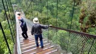 Day7 (El Pailón del Diablo) - see waterfall from bridge 10 Day Ecuador & Amazon Adventure (May 2014)