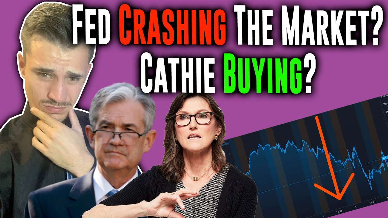 The Fed is Crashing the Stock Market, but Cathie Wood loves it?