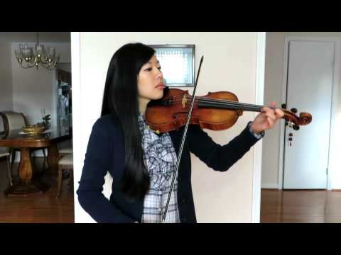 Blank Space by Taylor Swift - Violin Cover