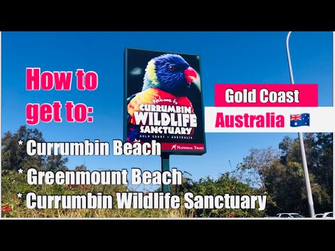 HOW TO GET TO Currumbin Beach, Greenmount Beach, Currumbin Wildlife Sanctuary, QLD-NSW BORDER