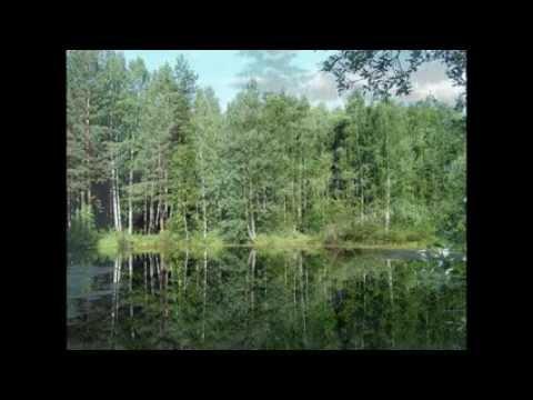 Настенные Обогреватели ТРИО - YouTube