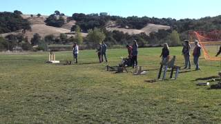 Physics At Chs: Tennis Ball Catapults Launch