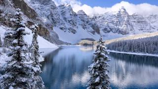 Winter's Mirror - Alvin Wilson