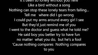 """Chris Cornell - Nothing Compares 2U - Cover - Live -  Scroll Lyrics """"22"""""""