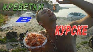 Як ми ловили і готували креветок під Курськом.Креветки на павука.Водосховище в місті Курчатов.