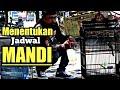 Mencari Settingan Jadwal Mandi Cendet Paling Akurat  Mp3 - Mp4 Download
