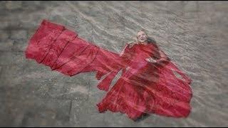 Download MEREA RANJHA - Anita Lerche MP3 song and Music Video