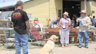Our Fredericksburg-Fredericksburg Trade Days