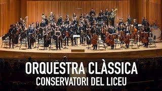 Orquestra Clàssica del Conservatori del Liceu - Guia d'Orquestra per a Joves (B. Britten)