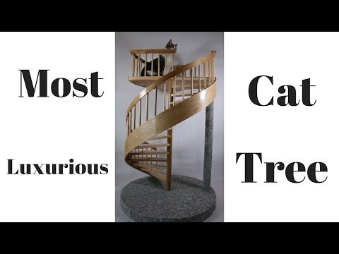How I built the most luxurious Spiral Staircase Cat Tower  1/3 Scale