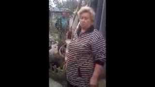 Городской службе отлова не отдают самовыгульную собаку, покусавшую человека_2013 Харьков