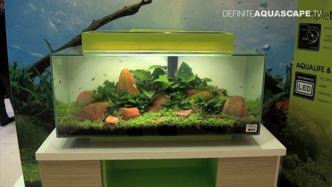 Aquarium ideas from interzoo 2014 fluval edge for Aquarium edge