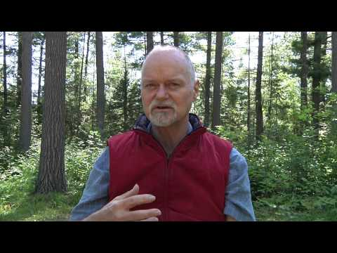 Interview with Veteran Teacher Russell Scott on Enlightenment Intensives