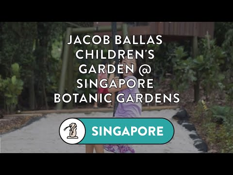 NEWLY Revamped Jacob Ballas Children's Garden at Singapore Botanic Gardens