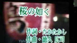 カラオケ 練習 桜の如く 坂本冬美