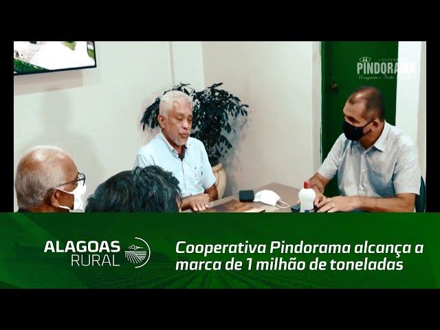 Cooperativa Pindorama alcança a marca de 1 milhão de toneladas de cana processadas na usina