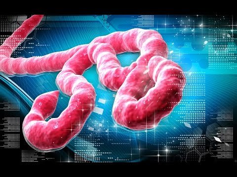 Ebola; is Child of HIV '?'