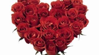 Matti & Teppo - Miljoona Ruusua