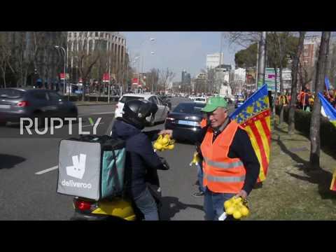 Spain: 'Orange vest' farmers protest EU-South Africa deal on imports