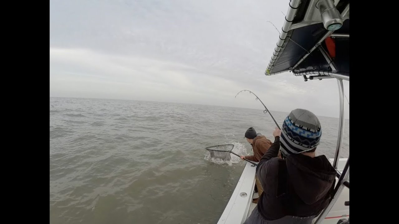 Delaware bay striper fishing report new jersey 2014 youtube for De fishing report