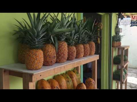 Cabrera Dominican Republic Supermarkets Life In The DR Markets Fruits Vegetables Food