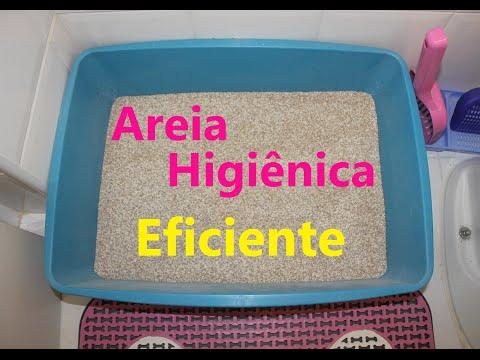 Areia Higiênica para Gatos Eficiente por Alessandra Rancan