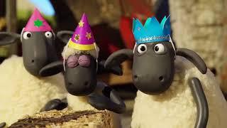 La oveja Shaun loquendo - Capítulo 103 - El cumpleaños de Timmy