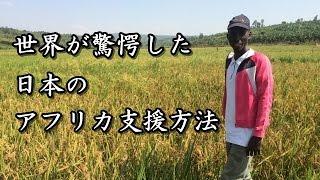 【海外の反応】世界が感動!日本が見せた本当に必要な支援の形とは 海外「これはアフリカの飢餓問題を解決する神の一手だ」未来を見据えた的確な支援に外国人も衝撃と感動の嵐