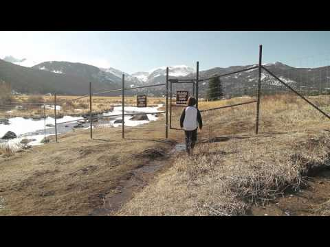 Estes Park Middle School film: What's Up with all the Elk?
